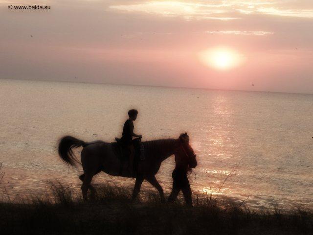 Можно было и на лошадях покататься