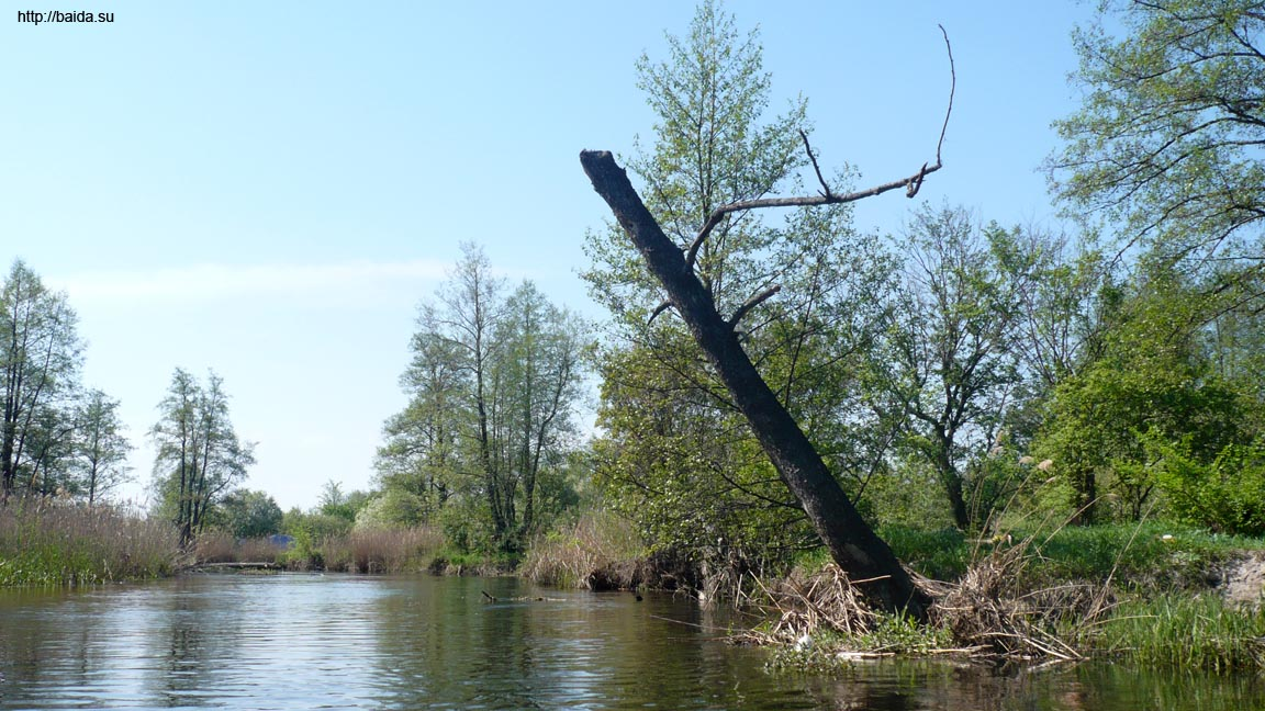Снова река