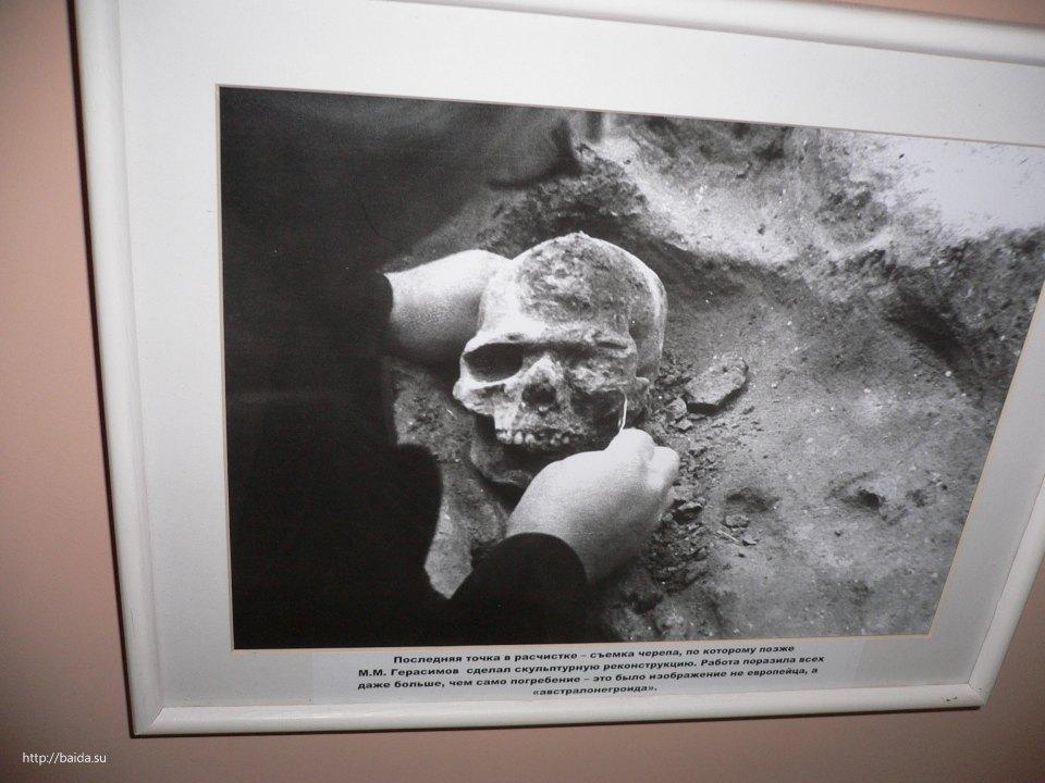 Фото черепа