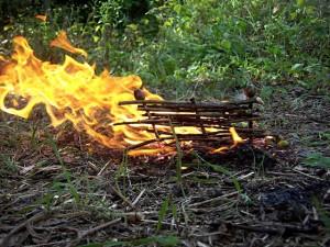 Помните! В лесу с огнем шутки плохи