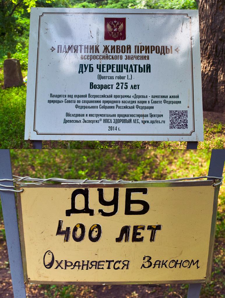 Козьмопрутковские надписи