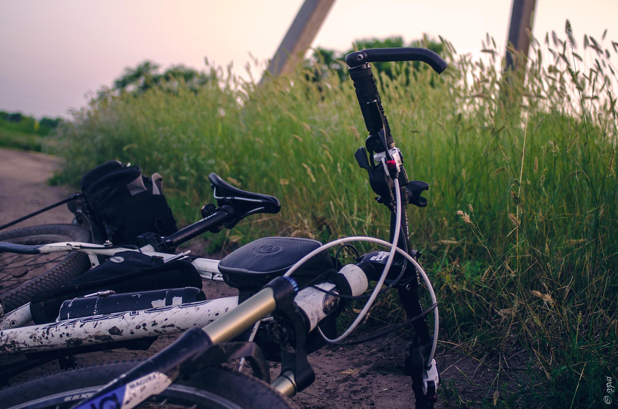 Случайная встреча на велодоне